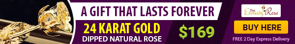 top offer eternity gold rose